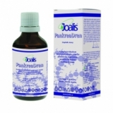 Joalis PankreaDren (slinivka) 50 ml